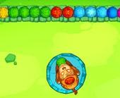 Игра Зума в джунглях фото