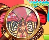 Игра Отличия с Бабочками фото