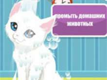 Игра Уход за котятами фото
