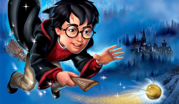 Игры Гарри Поттер