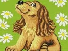 Вышивка Собачка